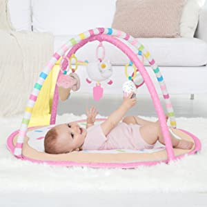 Carter's, Carters, Activity Center, Activity Gym, Gym, Baby, Toys, Play, Pink, Baby Girl