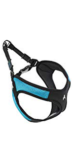gooby escape proof backing out small dog harness