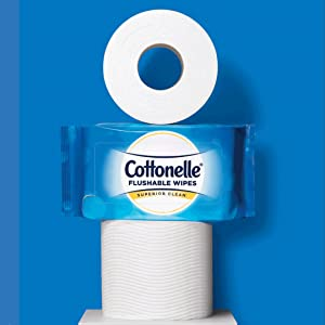 Large, 2-Ply Toilet Wipes CleanBetter Than Toilet Paper