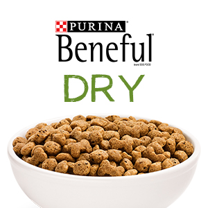 Purina Beneful dry dog kibble