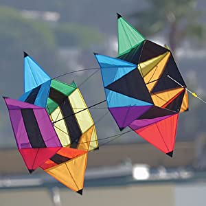 Wind N Sun - A Pair Of Kites