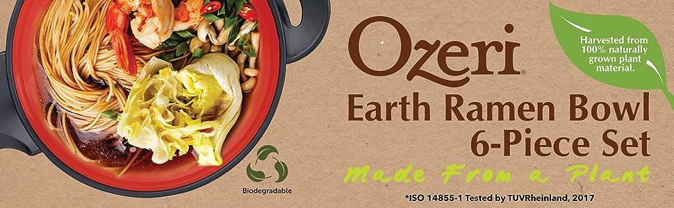 Udon Noodle Bowl; Pho Bowl; Ramen Bowl; Miso Soup Bowl; Noodle Bowl; Pad Thai; Chow Mein Bowl