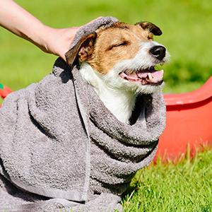 Pura Naturals Pet, Naturals Pet, Pura Naturals Dog, Naturals Dog, Naturals Pet Flea