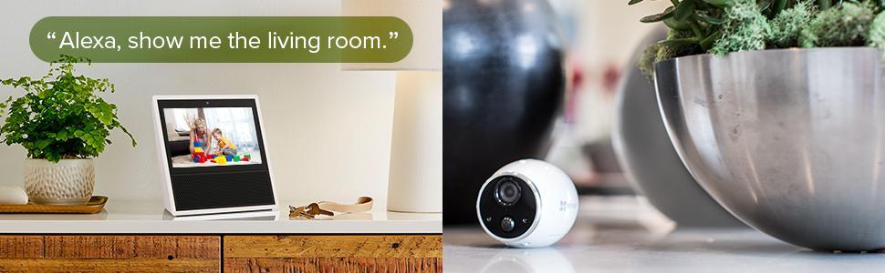 smart home security system, voice control, amazon echo, alexa, echo show, fire tv