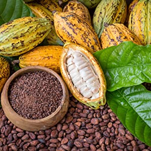 Ethical Cacao
