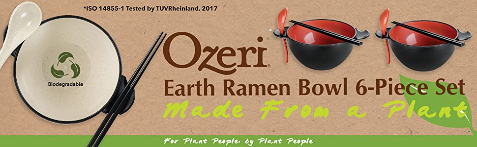 plant fiber bowls; natural bowl set; vegan tableware; ramen utensils; Asian noodle bowl