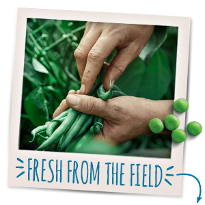 Gerber knows where all the fruits and veggies in their yummy foods are grown.
