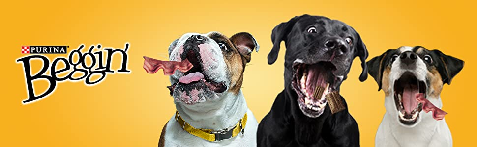 Purina Beggin dog treats