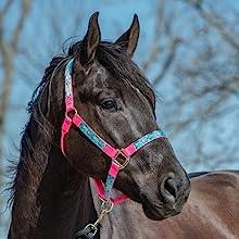 horse halter pink
