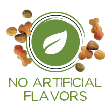 Dry dog food with no artificial flavors