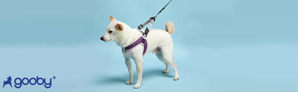 gooby simple harness 3 III for small dogs.