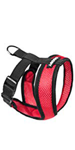 Gooby Comfort X Head-In Small Dog Harness