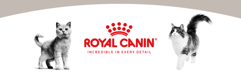 ROYAL CANIN INCREDIBLE IN EVERY DETAIL Cat Banner