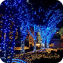tree decorative string lights