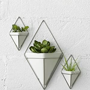 wall planter, hanging planter, hanging planter vase, wall planter indoor, hanging planter indoors