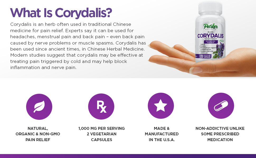 Woman's hand holding Parker Naturals Corydalis bottle and list of Corydalis benefits.