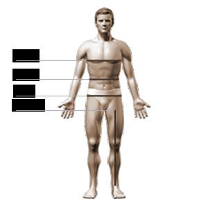 Underworks Men Single Bilateral Inguinal Hernia Brace, Hernia Support Brief, Hernia Support Brace
