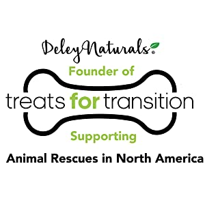 pet dog cat rescue animal rescues charity