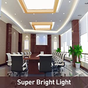 12V IP54 LED Strip Light Super Crisp Bright Light