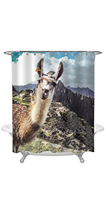 Close Up of Alpaca Face in Front of Machu Picchu Ruins Shower Curtain