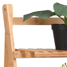 Plant Flower Stand