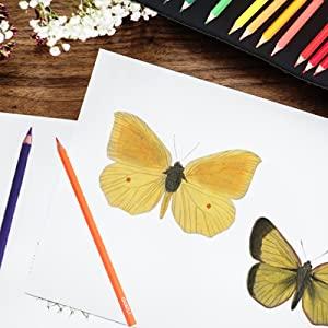 Wide Range of Coloring Technique