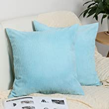 Sky Blue Pillow covers