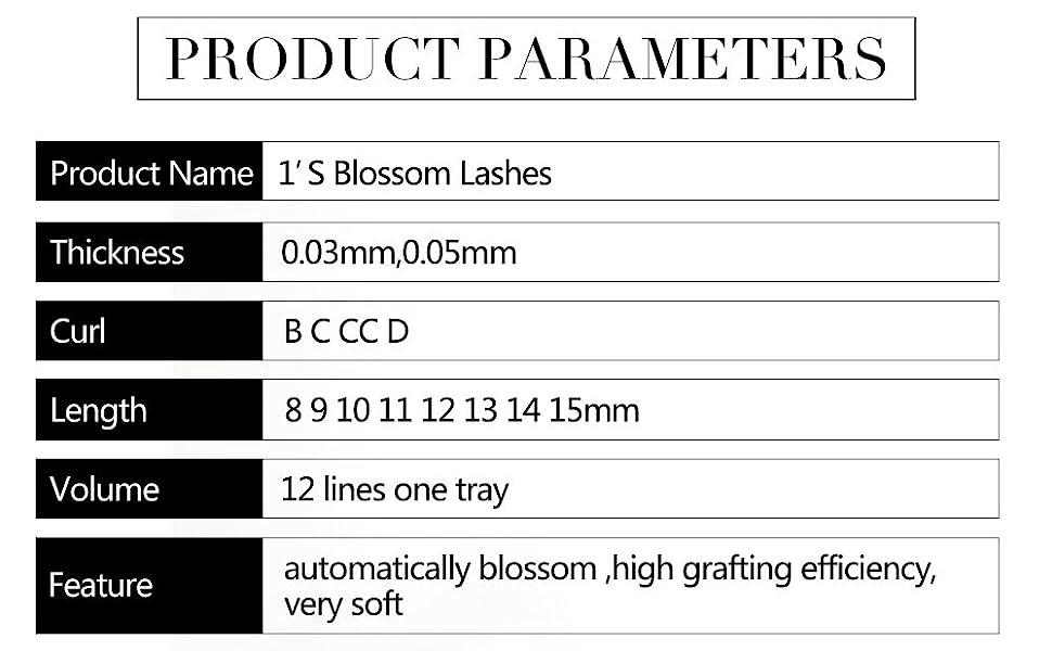 bloom eyelash information