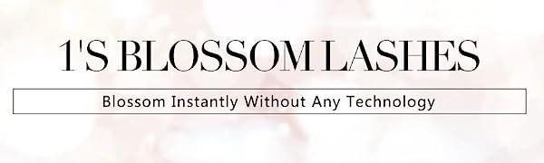 blossom lashes