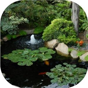 UV clarifier algae pump air aeration tubing diffuser clear water pond water garden subsurface