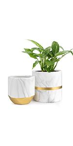 ceramic planter set of 2
