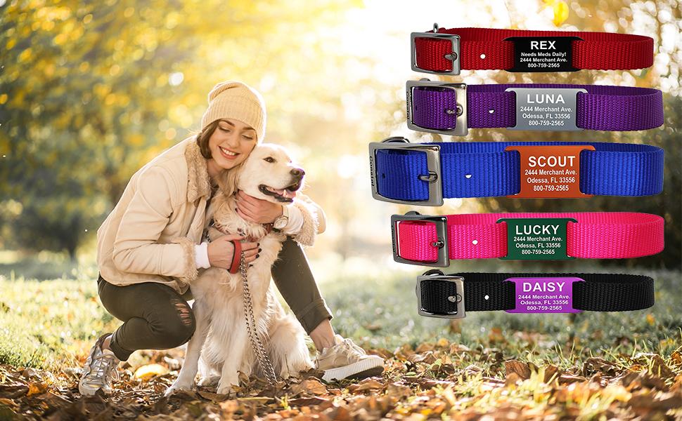 engraved slide on collar pet dog puppy colors variety custom customization name address phone