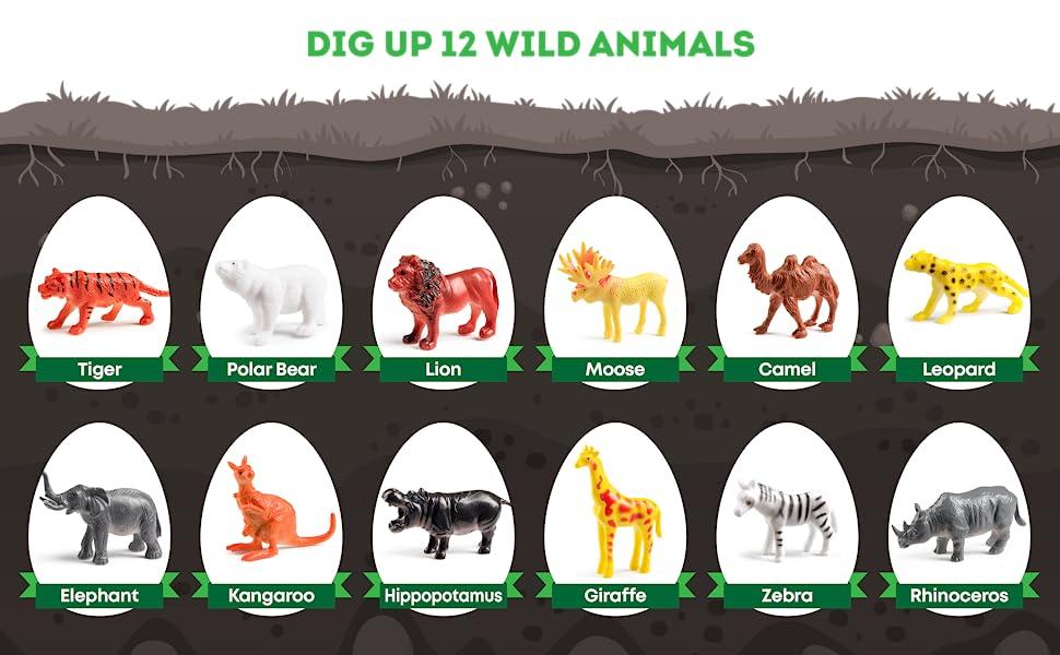 Dig up 12 Wild Animals
