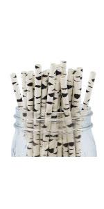 Just Artifacts Paper Straws Birch