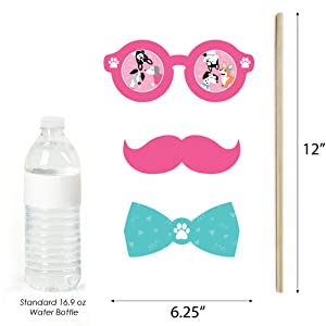 Pawty Like a Puppy Girl - Pink Dog Baby Shower or Birthday Party Photo Booth Props Kit Decor