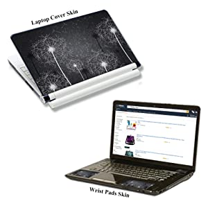 LaptopSkin2900