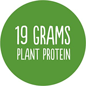 19g plant protein