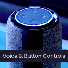 Voice and Button Controls