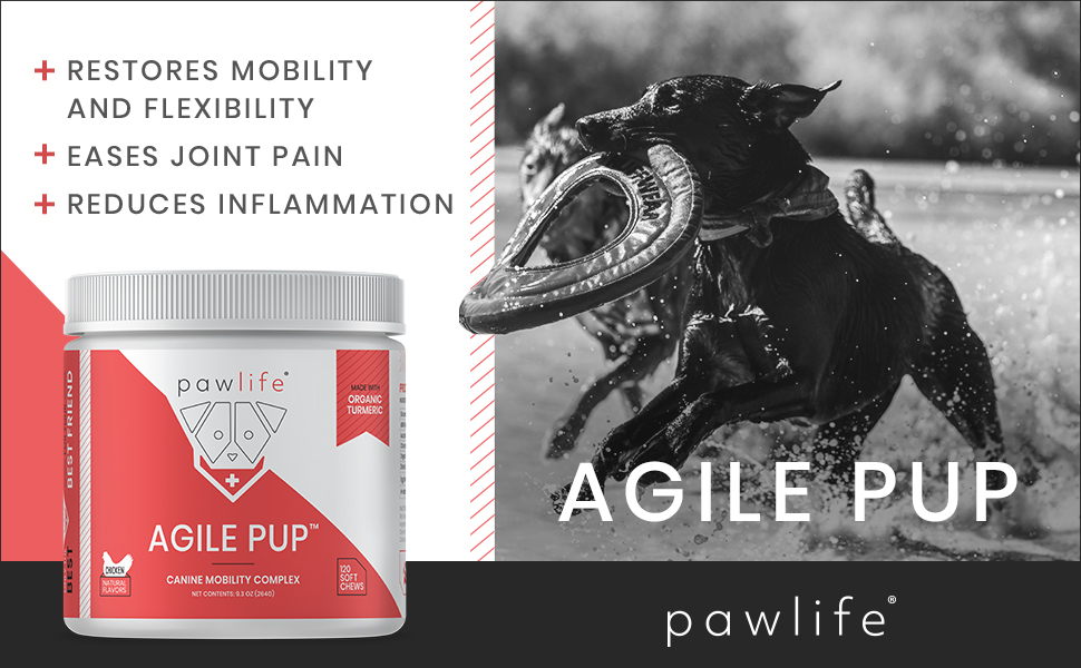glucosamine for dogs chondroitin vitamins msm pain relief joint inflammation agile pup turmeric