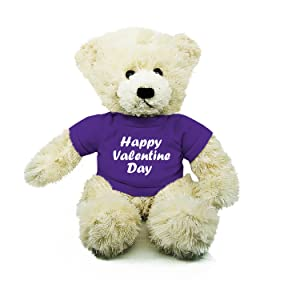 Valentine day gifts for girls plush teddy bear stuffed toys babies ornament toy story adorable cool