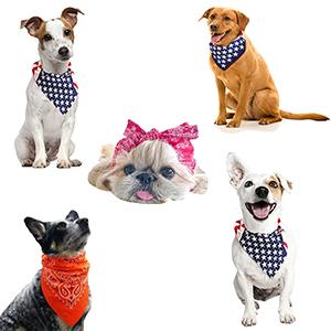 bandanas for pets
