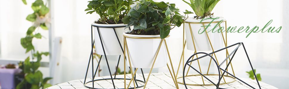 FLOWERPLUS  Succulent Planter With Stand Gold | 4.3 Inch