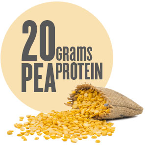 20 grams of pea protein
