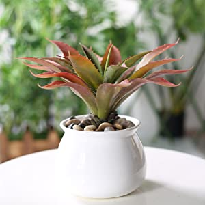 Artificial Succulents Aloe Plants