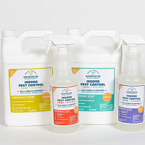 indoor pest control cedar oil rosemary lemongrass peppermint
