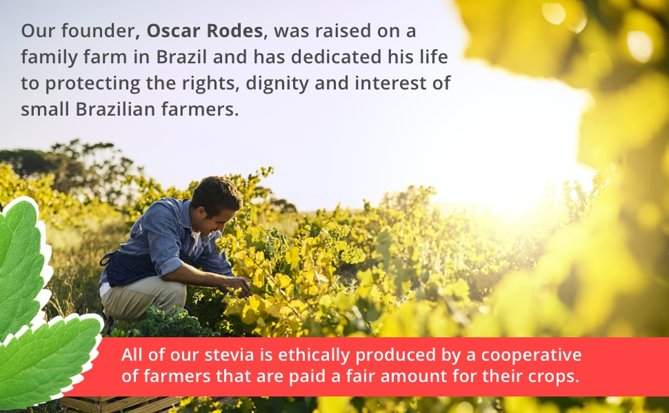 Protect the rights, dignity, and interest of small Brazilian farmers.