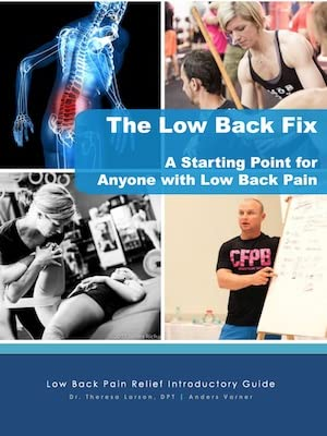 low-back-fix-guide
