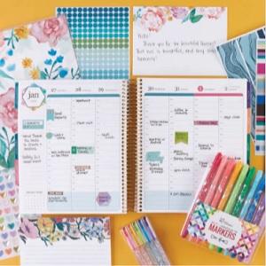 Erin Condren, PetitePlanner, LifePlanner, Calendar, Journal