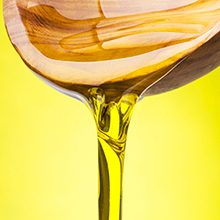 6 plant based oil
