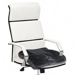 office cushion